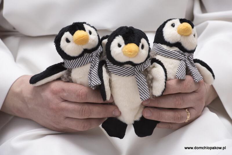 Pingwinek nr 113